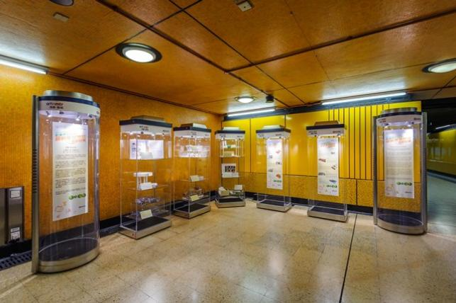 Exhibition Stand Design Hong Kong : Art in mtr exhibition displays students innovative design on