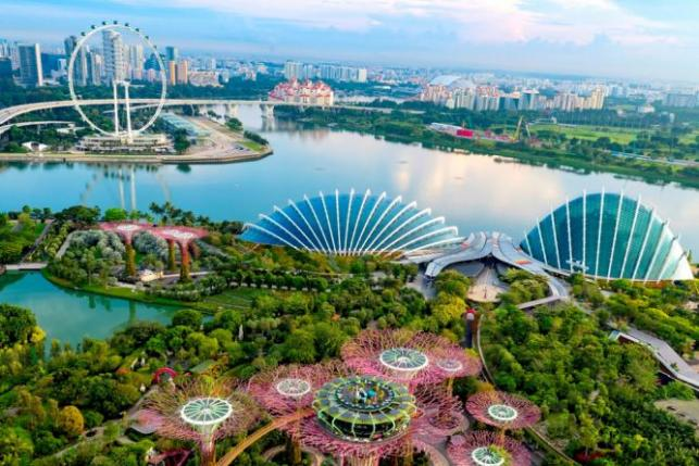 singapore development Some key decisions were the development of changi airport as a regional transport hub after singapore outgrew the previous paya lebar airport, which was a state-of-the-art facility when it opened.